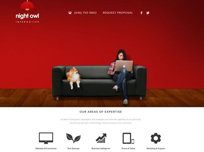 Night Owl Interactive™